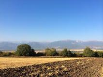 Поля фермера Стоковые Фотографии RF