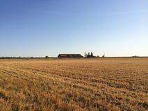 Поля фермера Стоковые Изображения RF