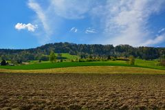 Поля швейцарской деревни окруженные и вспаханные Стоковая Фотография RF