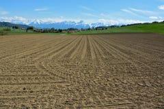 Поля швейцарской деревни окруженные и вспаханные Стоковое фото RF