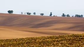 Поля Moravian волнистые Стоковое фото RF