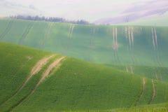 Поля Rolling Hills и зеленой травы Стоковые Фотографии RF