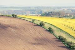 Поля Rolling Hills и зеленой травы Стоковые Фото