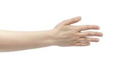 Правая рука молодой женщины подсчитывая 5 Стоковые Фотографии RF
