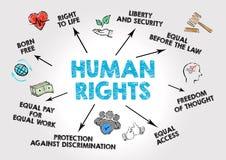 Права человека Concep иллюстрация вектора