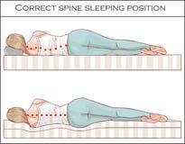 Правильное положение спать позвоночника иллюстрация вектора