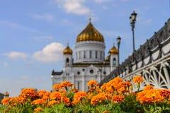 Правоверный собор Христоса спаситель в Москве, России стоковое изображение rf