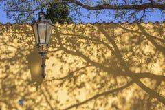 Прага - тени акаций для стены Capuchins уединяют стоковое фото