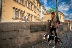 Прага, чехия, 15-ое сентября 2017: Молодые женщины туристские с собакой щенка и рюкзаком стоковое фото rf