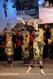 празднество Малайзия 2010 цветов Стоковое Изображение RF