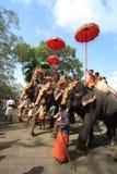 празднество слона стоковая фотография