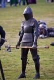празднество knights средневековое Стоковое Изображение