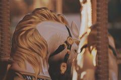 Праздники лошади привлекательности младенца парка Стоковые Фотографии RF