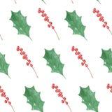 Праздников рождества падуба ягод акварели картина красных праздничная покрашенная безшовная Стоковое фото RF