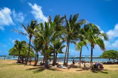 Праздник в рае: пляж, голубой океан, palmtrees, парк пляжа Lydgate, Wailua, Кауаи, Гаваи стоковое фото rf