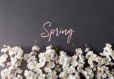 Праздничная предпосылка на праздники весны E r r стоковое изображение rf