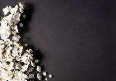 Праздничная предпосылка на праздники весны E r r стоковые фото
