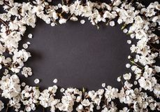 Праздничная предпосылка на праздники весны E r r стоковые изображения