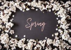 Праздничная предпосылка на праздники весны E r r стоковое фото
