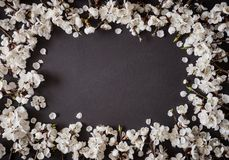 Праздничная предпосылка на праздники весны E r r стоковое фото rf