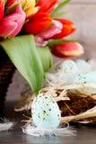 Праздничная традиционная орденская лента и тюльпаны пасхального яйца Стоковое Фото