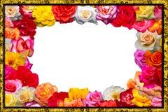 праздничная флористическая рамка Стоковое Изображение