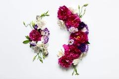 Праздничная цветочная композиция пионов на белой предпосылке Стоковые Изображения