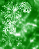 праздничные снежинки Стоковые Изображения RF