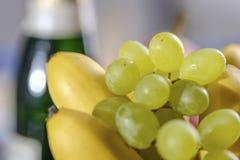 Праздничный натюрморт от свежих пестротканых плодоовощей на красивой предпосылке стоковое изображение rf