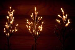 праздничный свет Стоковое Изображение