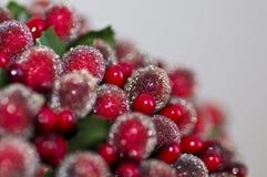 праздничный сезон Стоковые Фотографии RF