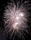 праздничный феиэрверк большой стоковое фото