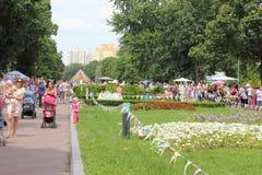 Праздненства в парке города Стоковые Фотографии RF