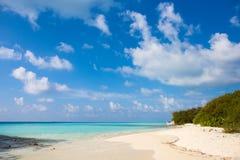 Праздника предпосылки природы чистой воды атолл остров-курорта тропического роскошный о приключении шноркеля свободы кораллового  Стоковое фото RF