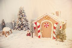 праздники gingerbread рождества застекляя расквартировывают подготовки кладя женщину валов Стоковые Изображения