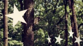 Праздник в древесине под звездами Стоковые Фотографии RF