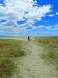 Праздник пляжа, с shrubland Стоковые Изображения RF
