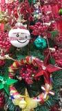 праздник украшения принципиальной схемы рождества цветастый орнаментирует сезонное традиционное Стоковое Изображение