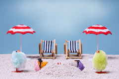 праздник chiks Стоковые Фотографии RF