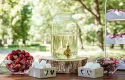 Праздничная сервировка стола с плодоовощ, зефирами и соком березы outdoors Стоковые Фото