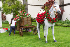 Праздничное украшение цветков в Фуншале, Мадейре, Португалии Стоковые Фотографии RF