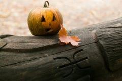 Праздничные тыквы на хеллоуин на журнале Стоковая Фотография