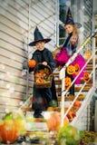 праздновать halloween Стоковое Фото