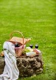 Праздновать outdoors в парке с красным вином Стоковые Изображения RF