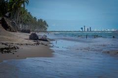 Прая делает Paiva, Pernambuco - Бразилию Стоковое фото RF