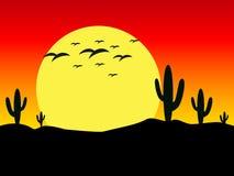 Превосходный дизайн захода солнца в пустыне Стоковое Фото