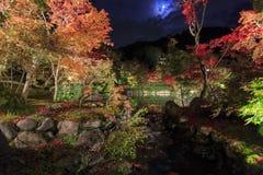 Превосходный взгляд, цвет падения на Eikando Zenrinji, Японии в осени Стоковая Фотография