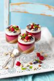 Превращайте в желе десерт с различными слоями: кофе, шоколад, поленики, молоко кокоса стоковая фотография