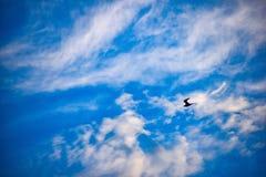 Предел неба стоковое изображение rf