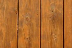 Предкрылки древесины сосенки Стоковое Фото
